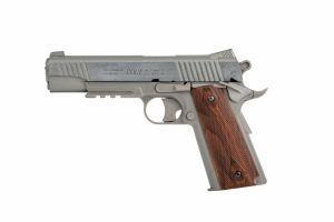 Colt 1911 Rail Gun stainless co2 non blow-back